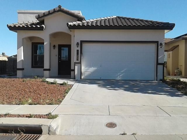 14219 English Point Avenue, El Paso, TX 79938 (MLS #807026) :: The Purple House Real Estate Group