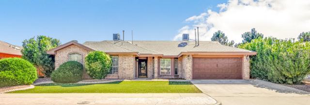 12032 Pueblo Laguna Drive, El Paso, TX 79936 (MLS #807033) :: The Purple House Real Estate Group