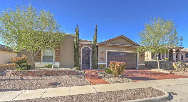 7303 Brays Landing Drive, El Paso, TX 79911 (MLS #807036) :: The Purple House Real Estate Group