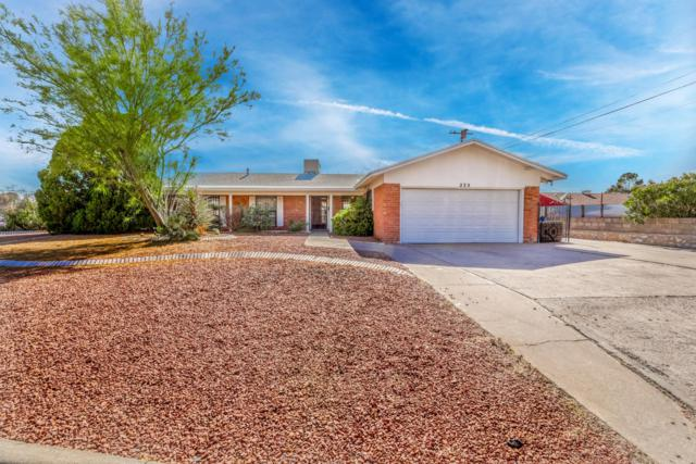 235 Ridgemont Drive, El Paso, TX 79912 (MLS #807039) :: The Purple House Real Estate Group