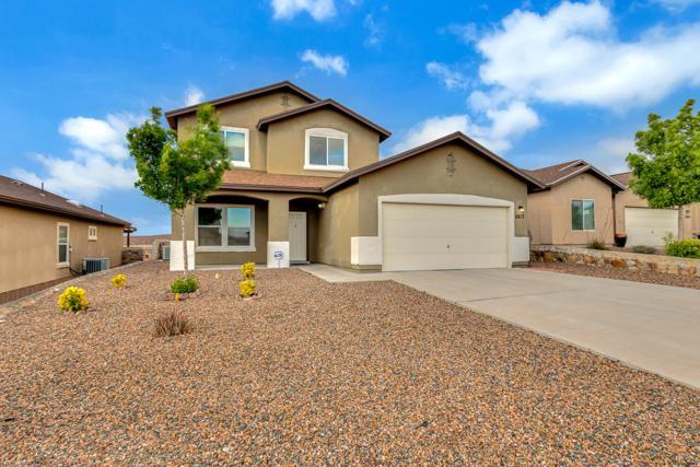 6813 Inca Dove, El Paso, TX 79911 (MLS #807041) :: The Purple House Real Estate Group