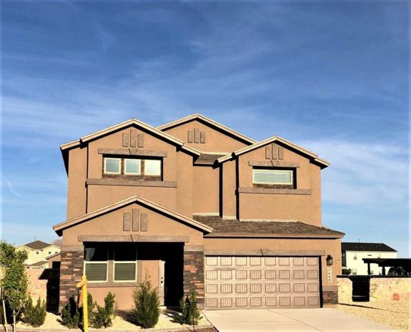6448 Villaggio Drive, El Paso, TX 79932 (MLS #807045) :: The Purple House Real Estate Group
