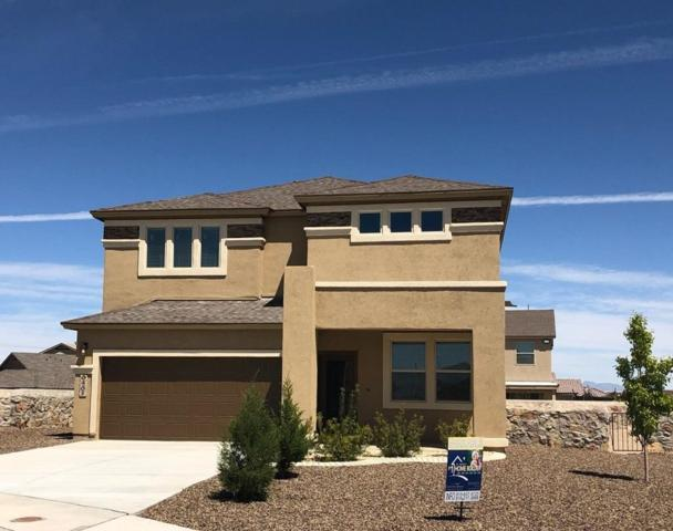 6461 Villaggio Drive, El Paso, TX 79932 (MLS #807046) :: The Purple House Real Estate Group