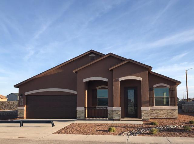 978 Grandevole Drive, El Paso, TX 79932 (MLS #807048) :: The Purple House Real Estate Group
