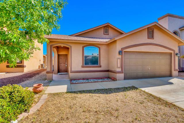 14266 Rattler Point Drive, El Paso, TX 79938 (MLS #807049) :: The Purple House Real Estate Group