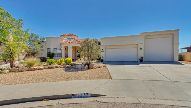 7232 Rochester Drive, El Paso, TX 79912 (MLS #807052) :: The Purple House Real Estate Group