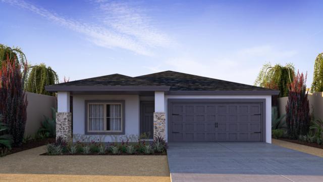 14925 Tierra Haven Avenue, El Paso, TX 79938 (MLS #807096) :: Jackie Stevens Real Estate Group