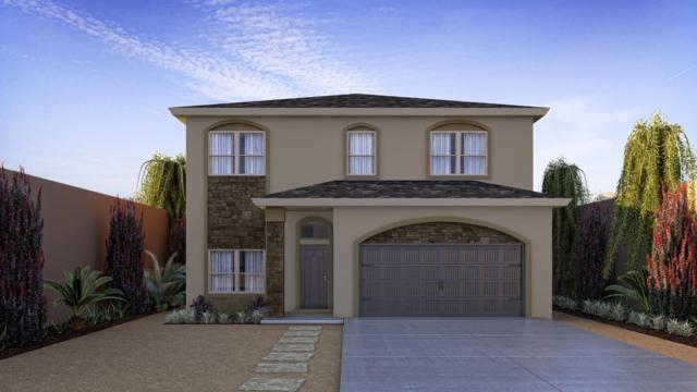 14840 Tierra Isaiah Avenue, El Paso, TX 79938 (MLS #807098) :: Jackie Stevens Real Estate Group