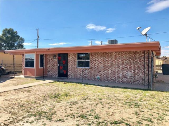 237 Henderson Place, El Paso, TX 79907 (MLS #807109) :: Jackie Stevens Real Estate Group