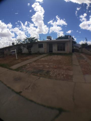 8957 Mount Shasta Drive, El Paso, TX 79904 (MLS #807221) :: The Matt Rice Group