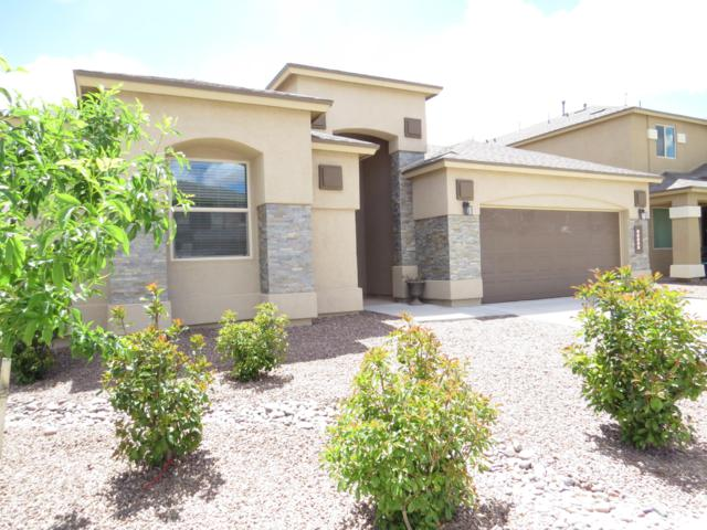14940 Sunny Land Ave, El Paso, TX 79938 (MLS #807547) :: The Purple House Real Estate Group