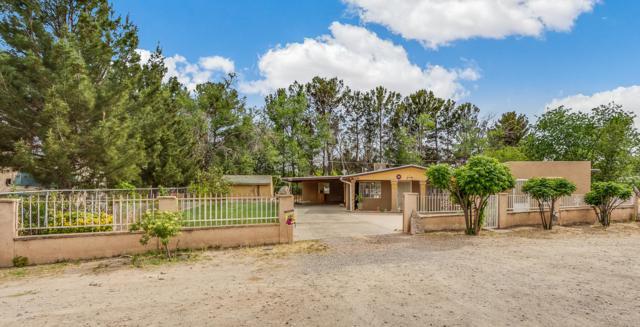 12748 Acevedo Drive, San Elizario, TX 79849 (MLS #807936) :: Preferred Closing Specialists