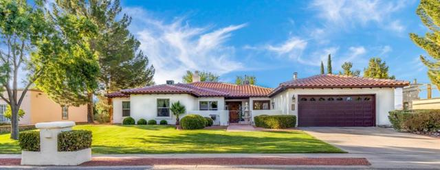 613 Willow Glen Drive, El Paso, TX 79922 (MLS #807989) :: The Matt Rice Group