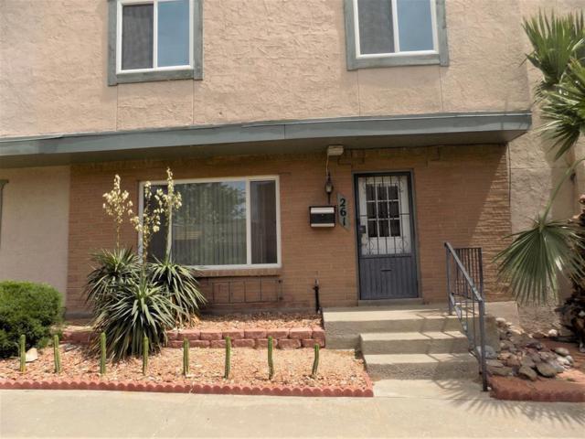 261 Maricopa Drive, El Paso, TX 79912 (MLS #808138) :: The Purple House Real Estate Group