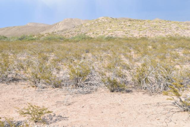 35 Butterfield City #2 Lot 16, Clint, TX 79938 (MLS #808829) :: The Purple House Real Estate Group