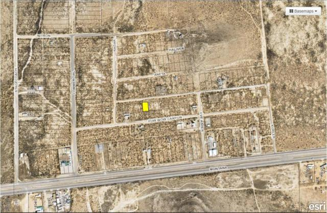 8 Butterfield City #3 Lot 11, Clint, TX 79938 (MLS #808835) :: The Purple House Real Estate Group