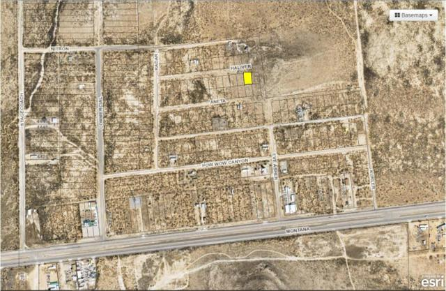 23 Butterfield City #3 Lot 2, Clint, TX 79938 (MLS #808836) :: The Purple House Real Estate Group