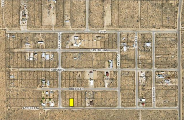 4 Butterfield City #4 Lot 26, Clint, TX 79938 (MLS #808838) :: The Purple House Real Estate Group