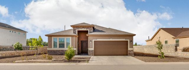 981 Pellegrino Avenue, El Paso, TX 79932 (MLS #808884) :: The Matt Rice Group