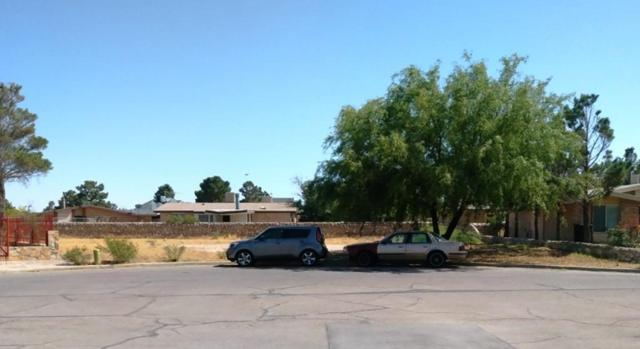 15352 Fairwood Court Court, Horizon City, TX 79928 (MLS #808906) :: The Matt Rice Group