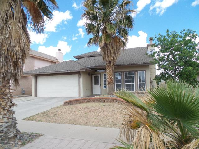 12221 Bill Mitchell Drive, El Paso, TX 79938 (MLS #808968) :: The Purple House Real Estate Group