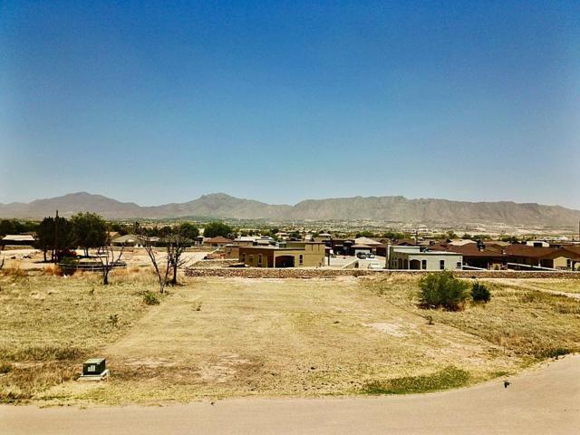 2840 Girl Scout Lane, Sunland Park, NM 88063 (MLS #808995) :: The Purple House Real Estate Group