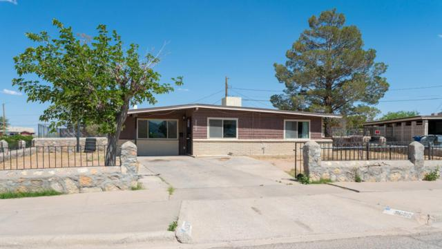 9652 Albacore Lane, El Paso, TX 79924 (MLS #809289) :: The Purple House Real Estate Group