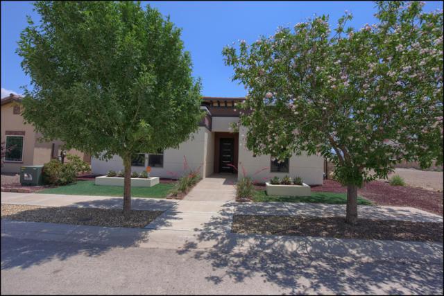 6544 Toivoa Place, El Paso, TX 79932 (MLS #809423) :: The Matt Rice Group