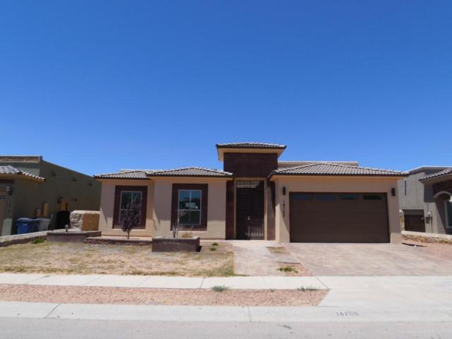 14705 Long Shadow Avenue, El Paso, TX 79938 (MLS #809496) :: The Purple House Real Estate Group