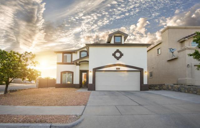 401 Everlook Lane, Horizon City, TX 79928 (MLS #809603) :: The Purple House Real Estate Group