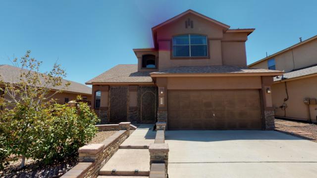 331 Emerald Woods Street, Horizon City, TX 79928 (MLS #809868) :: The Purple House Real Estate Group