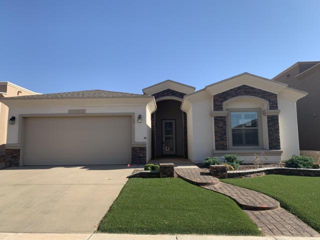 14661 Alton Oaks Avenue, El Paso, TX 79938 (MLS #809883) :: The Purple House Real Estate Group