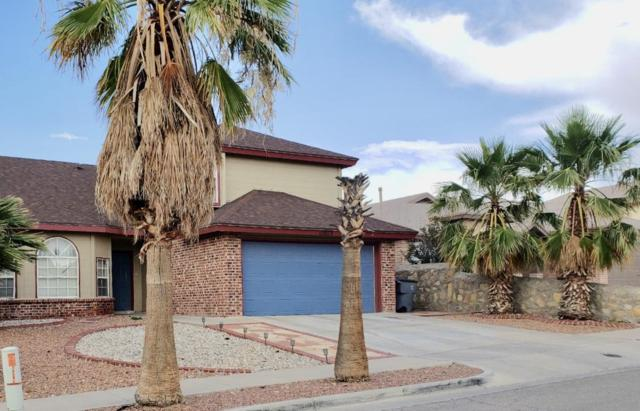 12075 Sterling Mary Way, El Paso, TX 79936 (MLS #809940) :: The Purple House Real Estate Group