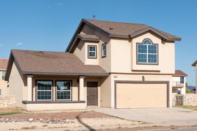 6240 Brillo Luna Street, El Paso, TX 79932 (MLS #810169) :: The Purple House Real Estate Group