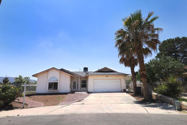 120 Calle Olaso Drive, El Paso, TX 79932 (MLS #810238) :: The Purple House Real Estate Group