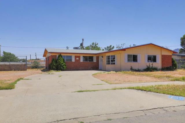 5554 Ketchikan Street, El Paso, TX 79924 (MLS #810330) :: The Purple House Real Estate Group