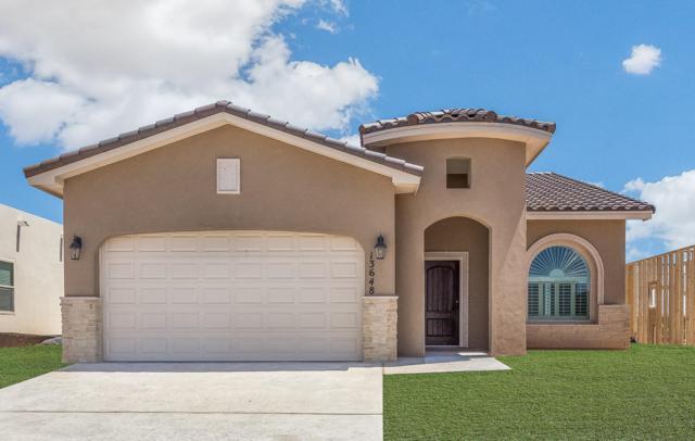 13648 Matfen, Horizon City, TX 79928 (MLS #810369) :: The Purple House Real Estate Group