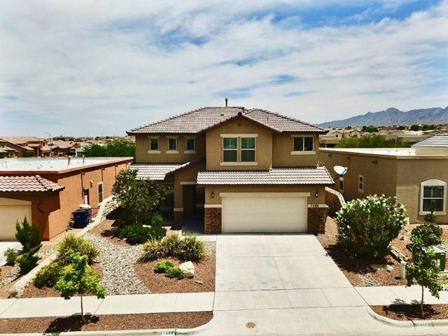 7389 Meadow Sage Drive, El Paso, TX 79911 (MLS #810371) :: The Purple House Real Estate Group