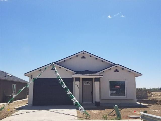 11712 Flor Celosia Drive, Socorro, TX 79927 (MLS #810396) :: The Purple House Real Estate Group