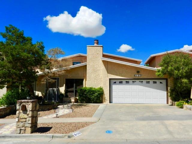6133 Los Robles Drive, El Paso, TX 79912 (MLS #810435) :: The Purple House Real Estate Group