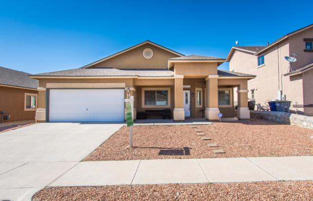 7089 Century Plant Drive, El Paso, TX 79912 (MLS #810438) :: The Purple House Real Estate Group