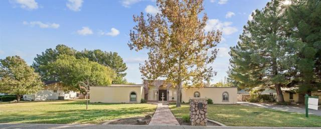4812 Portsmouth Boulevard, El Paso, TX 79922 (MLS #810458) :: The Purple House Real Estate Group