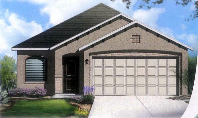14220 Peyton Edwards Avenue, El Paso, TX 79938 (MLS #810469) :: The Purple House Real Estate Group