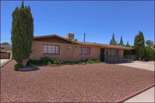 6529 Fiesta Drive, El Paso, TX 79912 (MLS #810471) :: The Purple House Real Estate Group
