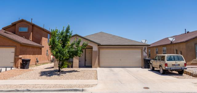 13239 Kestrel Avenue, Horizon City, TX 79928 (MLS #810472) :: The Purple House Real Estate Group