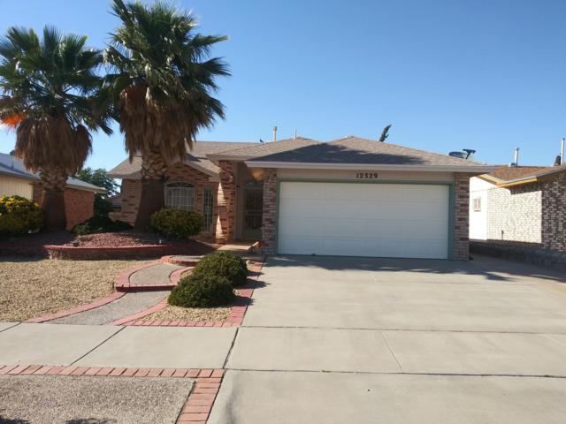 12329 Kari Anne Drive, El Paso, TX 79928 (MLS #810473) :: The Purple House Real Estate Group