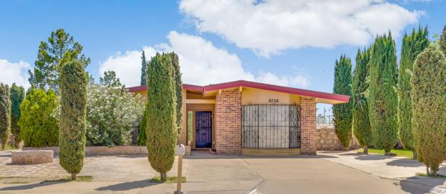 8728 Aparicio Drive, El Paso, TX 79907 (MLS #810481) :: The Purple House Real Estate Group
