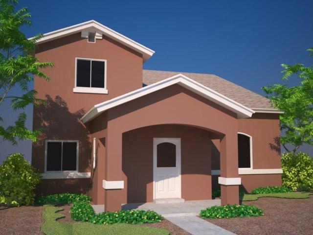 14821 Tierra Isaiah Avenue, El Paso, TX 79938 (MLS #810483) :: The Purple House Real Estate Group
