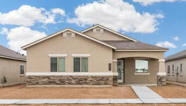 14813 Tierra Isaiah Avenue, El Paso, TX 79938 (MLS #810490) :: The Purple House Real Estate Group