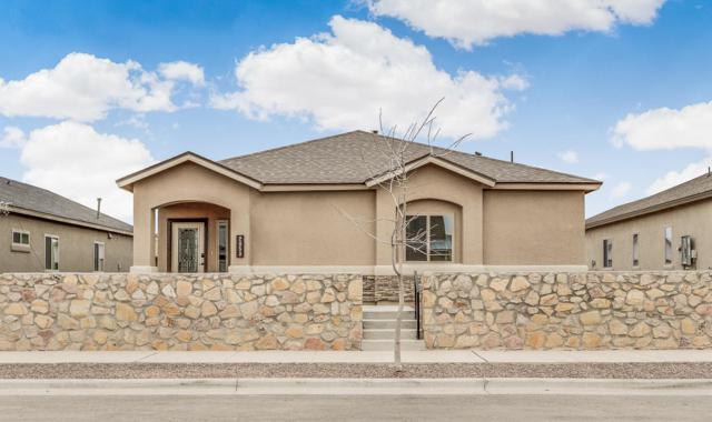 14837 Tierra Isaiah Avenue, El Paso, TX 79938 (MLS #810494) :: The Purple House Real Estate Group